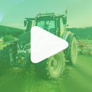 video siatie kukurice a slnečnice